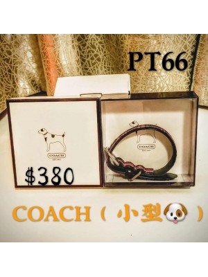 4) 20201106 寵物用品